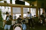 GRAPHIC IMAGE 'Insect Surfers at Sangria, Hermosa Beach, October 21, 2000'